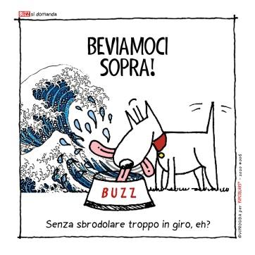 buzprimo7